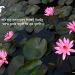 Water and Flowers ik onkar