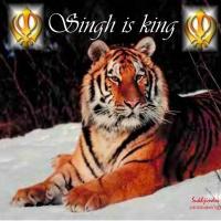 SinghKing