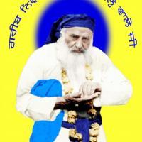 neeldhari sikh saint