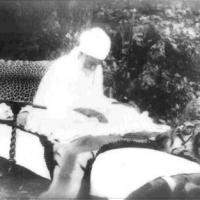 Sant Nand Singh Ji Nanaksar Kaleran wale.jpg